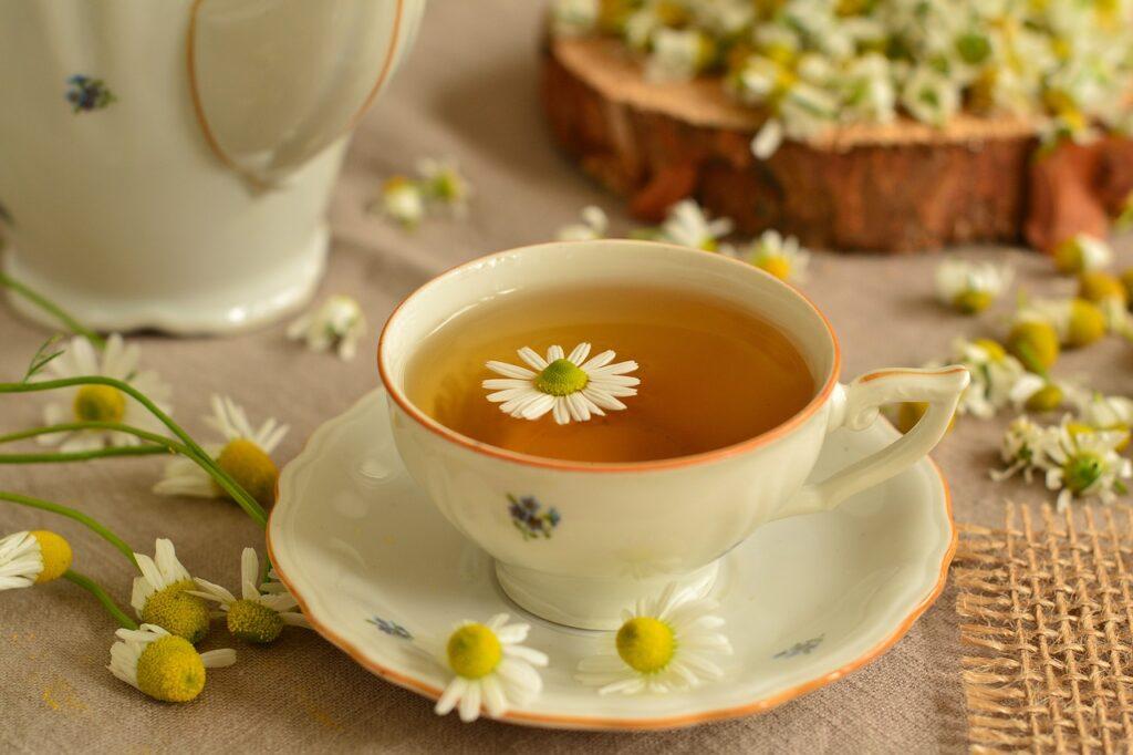 Bylinky na posílení imunity. Z kterých si uděláte nejlepší čaj?